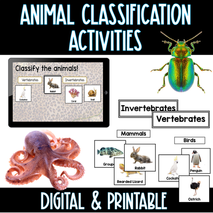 FREE Animal Classification Activities!