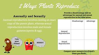 plant reproduction lesson