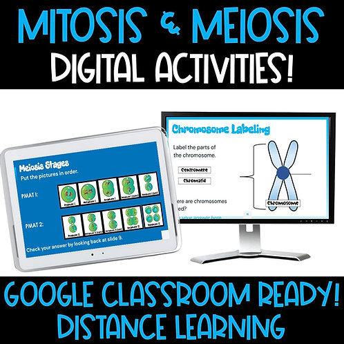 Mitosis and Meiosis Digital Activities