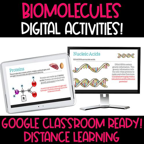 Biomolecules Digital Activities - Google Compatible
