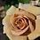 Роза Хани Дижон (Honey Dijon) коричневая срезочная чайно-гибридная роза