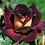 Thumbnail: Эдди Митчел (Eddy Mitchell)