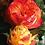 красно-желтая пионовидная роза Вулканика (Vulcanica)