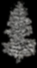 LOGO_LV_tree.png