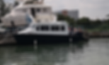 Centurion 30 Fast Ferry.png