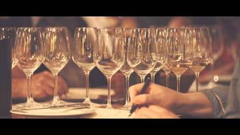 Film des champagnes SALON & DELAMOTTE