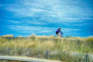 cyclist-4546766_1280.jpg