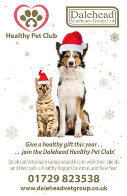Dalehead Vets_Christmas2017