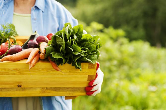 Cuida tu salud y al mundo; por qué debes consumir productos orgánicos