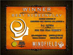 Winner Best Screenplay