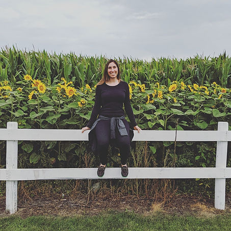 Sunflower field, fence, human