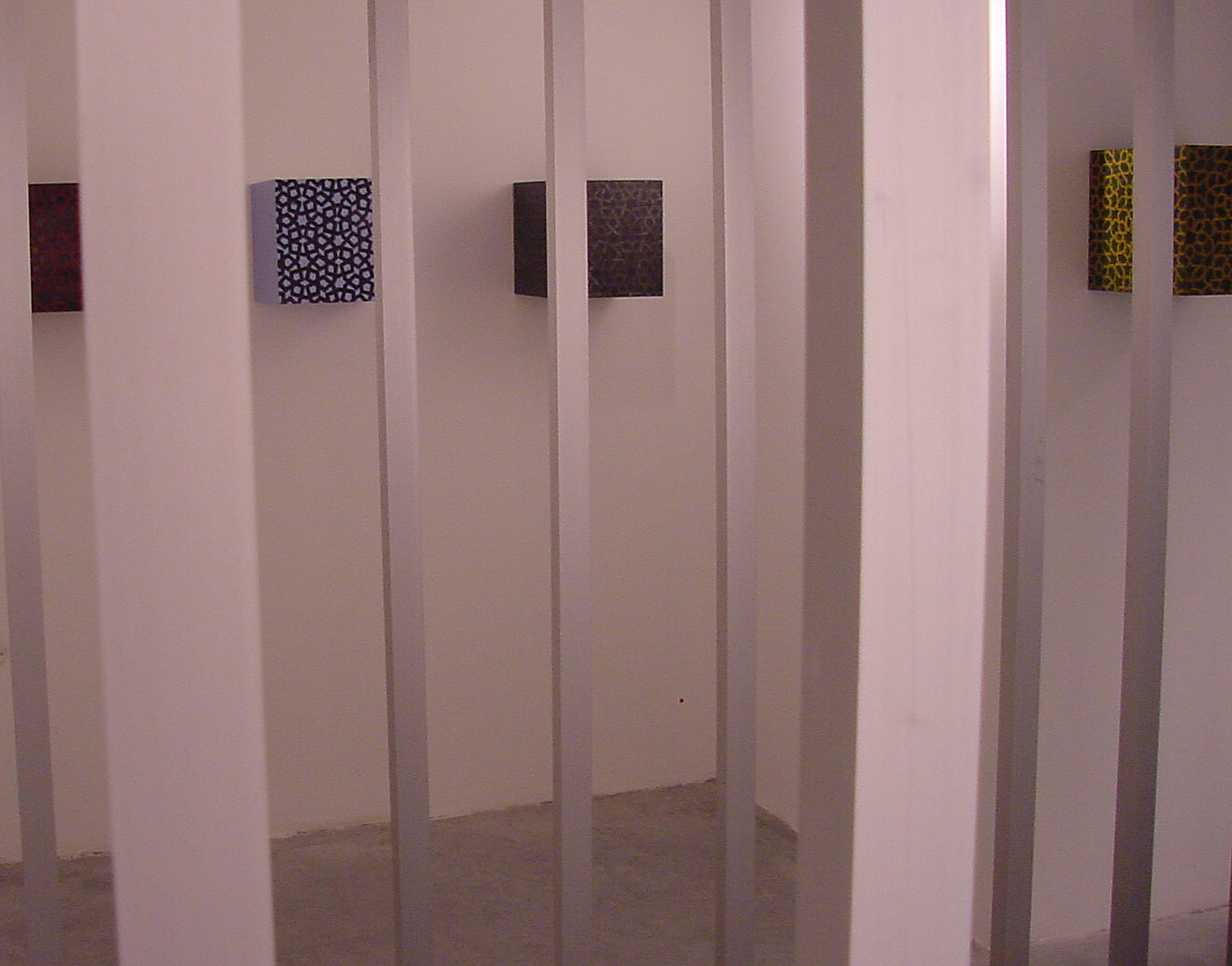 rashida 2002 box 6,insteletion  view
