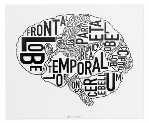 Ork poster - brain
