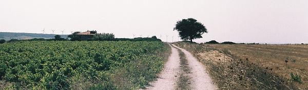 yol2.jpg