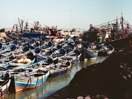 Kazablanka'dan Marakeş'e, oradan da Essaouira'ya