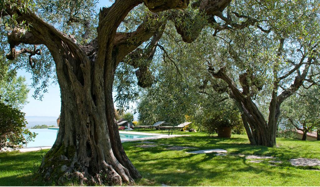 Toscana (12).JPG
