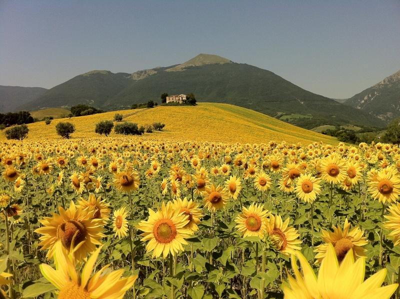 Abruzzo (2).jpeg