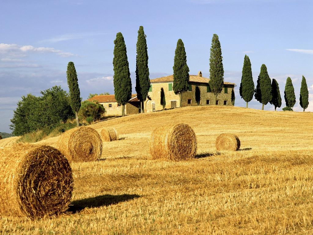 Toscana (2).jpg