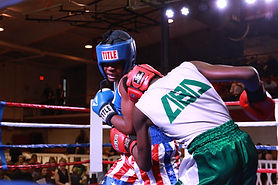 freedom fight boxing