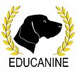 educainine.png