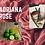 Thumbnail: Adriana Rose Eau de Parfum 50ml (Si Rose by Armani)