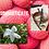 Thumbnail: Sophisticate Eau De Parfum 100ml (The One by D&G)