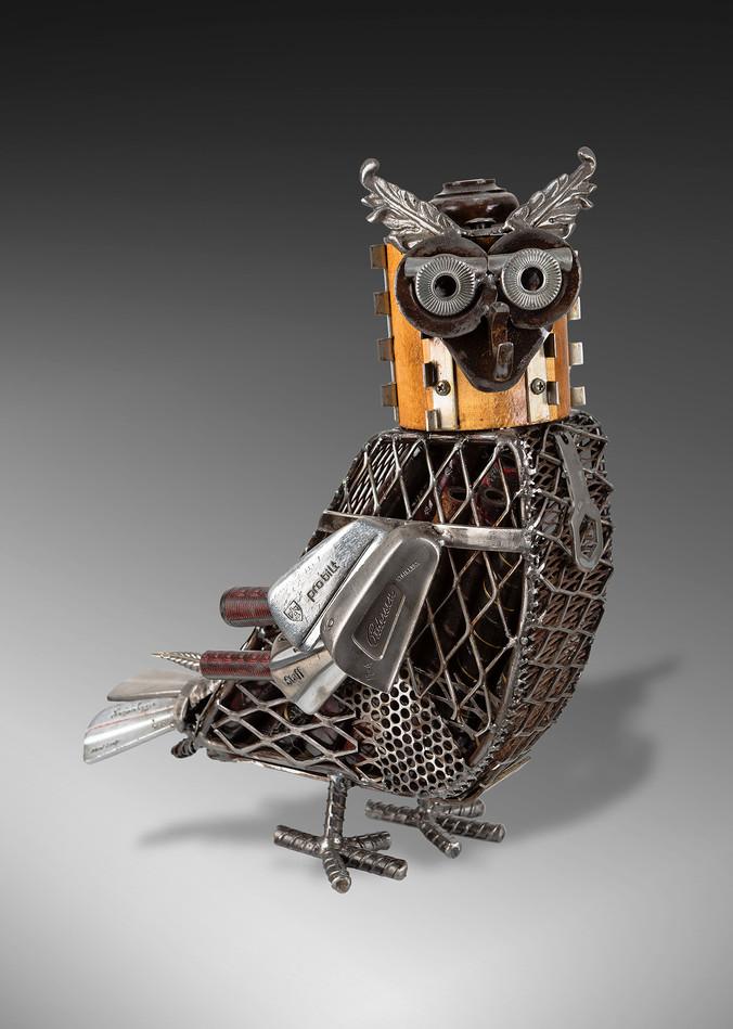 DA_owl2-8515.jpg