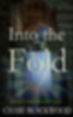 INTO THE FOLD - Book 3.jpg