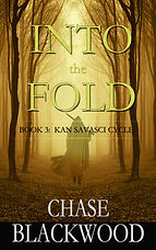 INTO THE FOLD - Cover JPEG.jpg