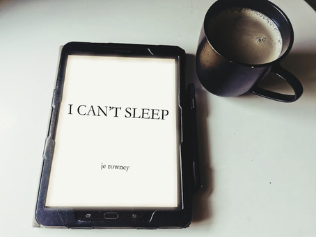 Review: I Can't Sleep by J.E. Rowney