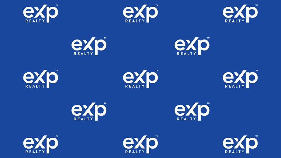 exp_zoom_background_newimage.jpg