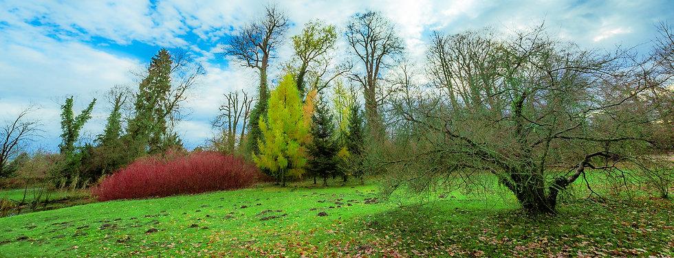 Spring, Potsdam, Germany