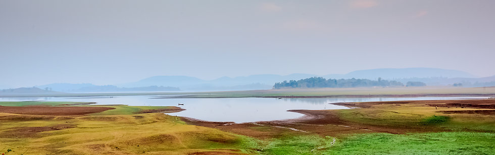 Early morning lake view, Telangana, India