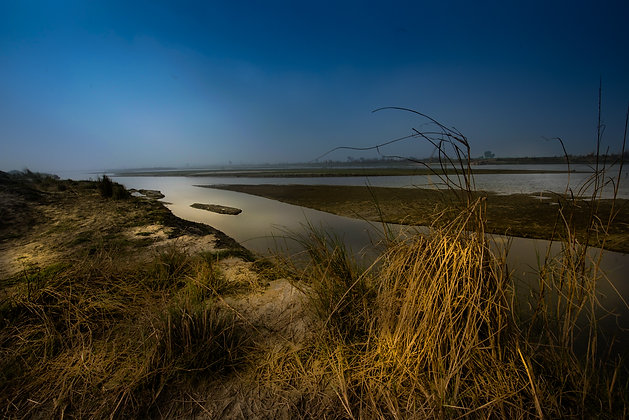 Islands of Yamuna, Delhi, India