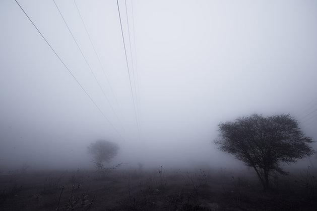 Early Morning In Najafgarh, Delhi, India
