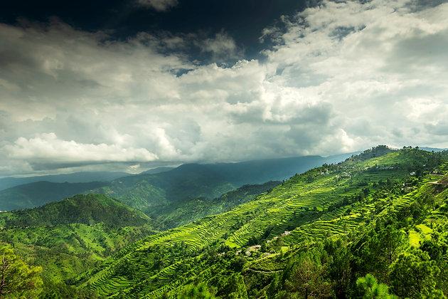 Hills of Mukhteshwar, India