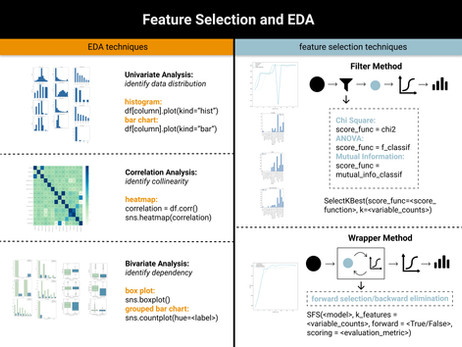 Feature Selection and EDA in Machine Learning