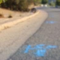 GPR markings.jpg