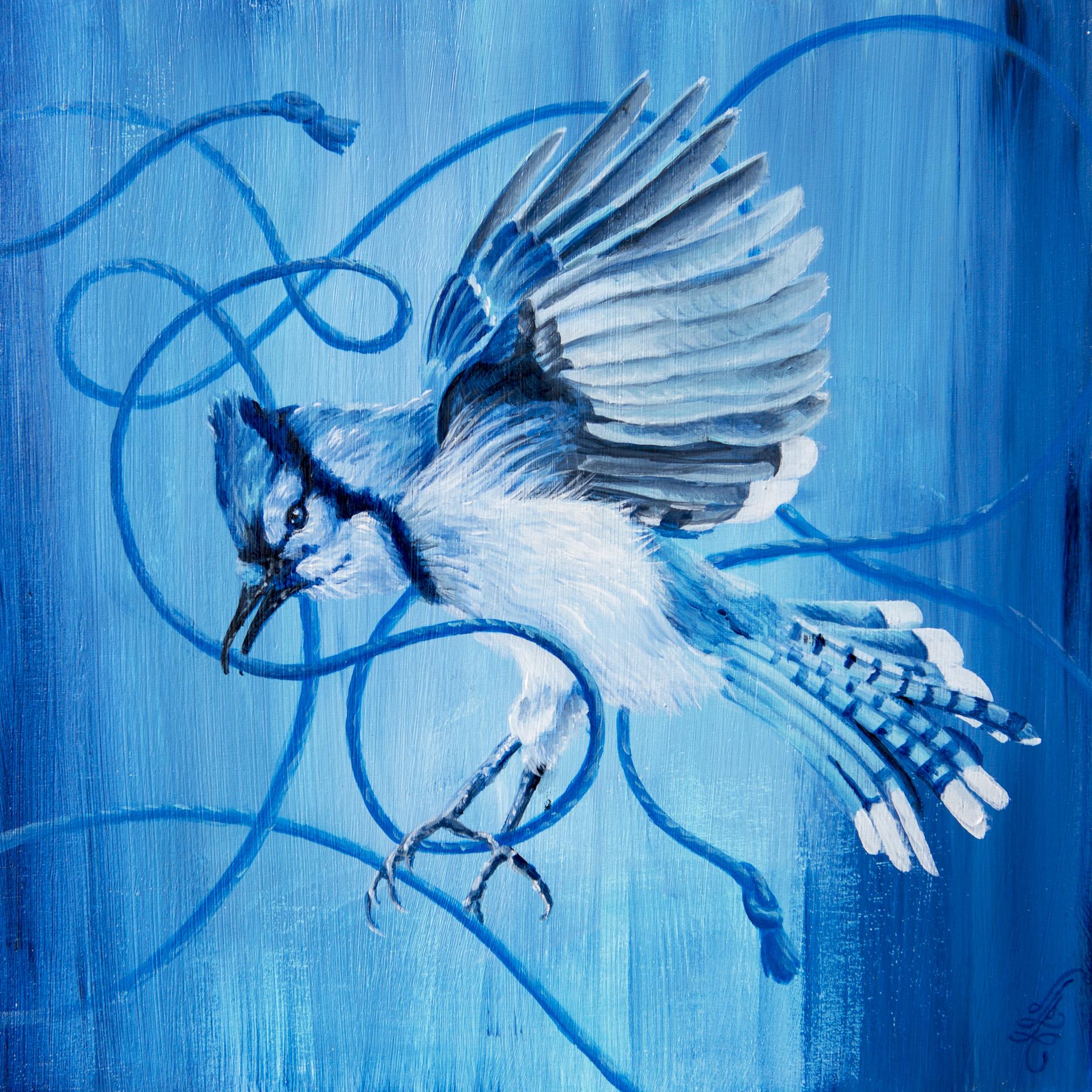 fly away, blue jay