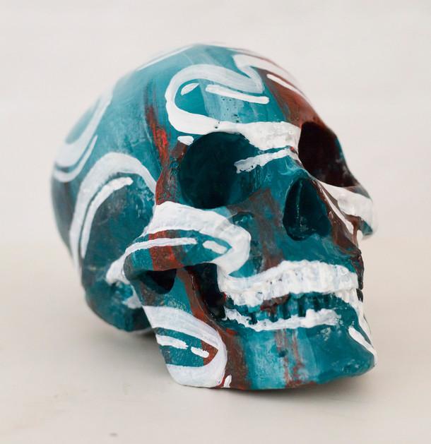 Skull - grass