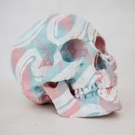 Skull - sky