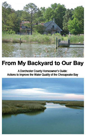 Cover-From My Backyard to Our Bay
