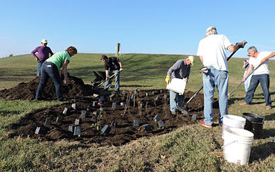 DCPG Board and volunteers help plant rain garen at Sailwinds Park