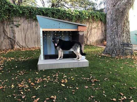 Big Dog - D2 Architecture - Suffolk.jpg
