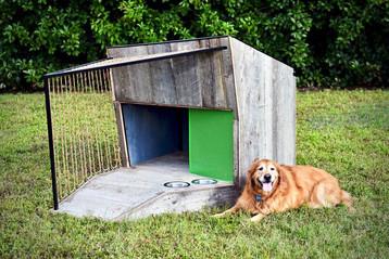 Enviro Dog - Beck Architecture - Lasco,