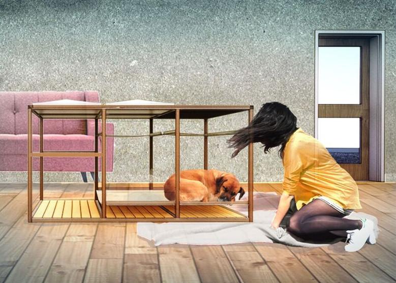 Doggy Decor - WRA Architects - WB Kibler