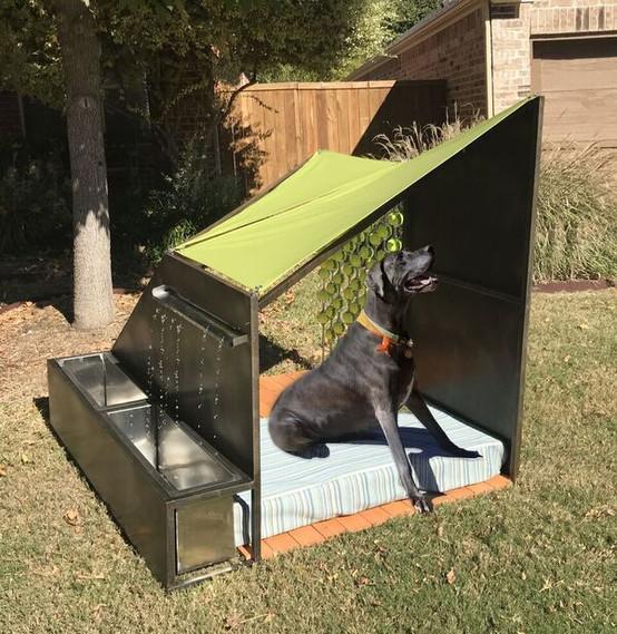 Big Dog - Domus - Shreve Land Constructo