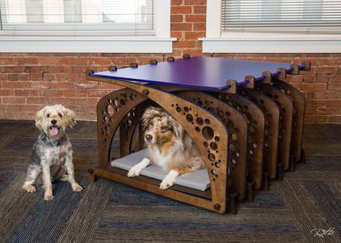 Doggy Decor - e4h - Skiles Group.jpg