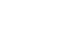 logo_playareal_pineapple.png