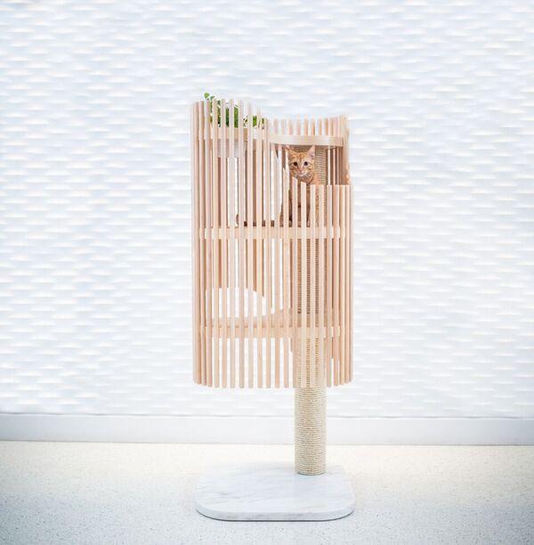Cat Condo - MMB Architects - James R Tho